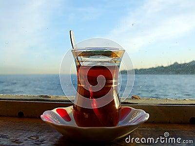 Turkse populer van de thee