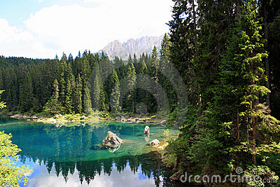 Turquoise Lake water in pines wood
