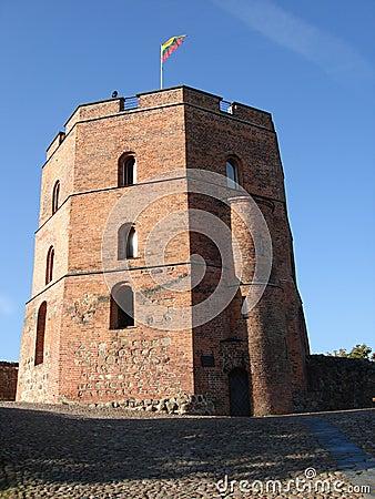 Turret In Vilnius