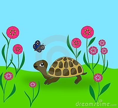 Turtle and Butterfly