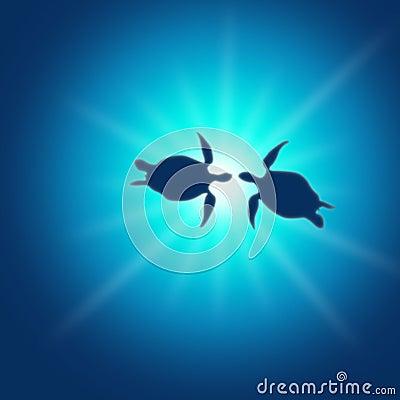 Turtle caretta