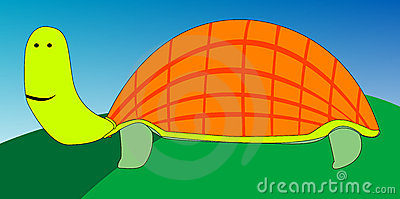 Turtle cartoon drawing