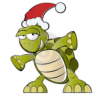 Turtle with Santa Claus hat