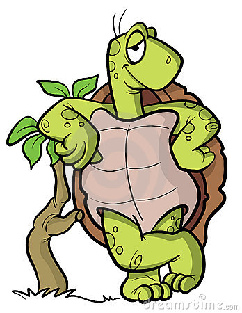 Turtle or tortoise cartoon illustration