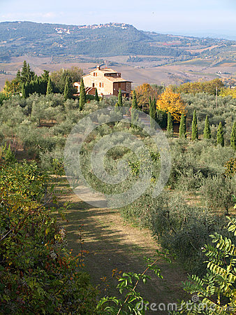 Tuscan Farmhouse &  Landscape6