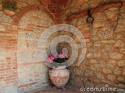 Tuscan terracotta flower pot