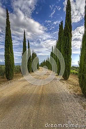 Free Tuscany Royalty Free Stock Photos - 20693508