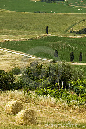 TUSCANY countryside with farms and hay-ball