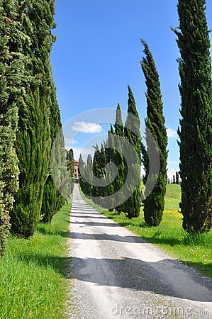 Tuscany Farmhouse  countryside