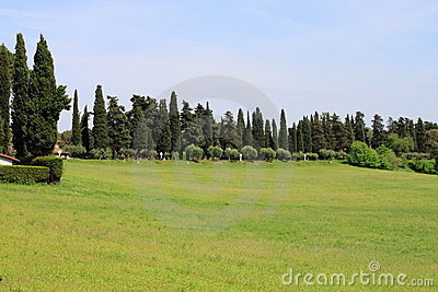 Tuscany meadows