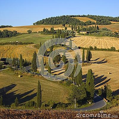 Free Tuscany - Serpentine Royalty Free Stock Image - 14101386