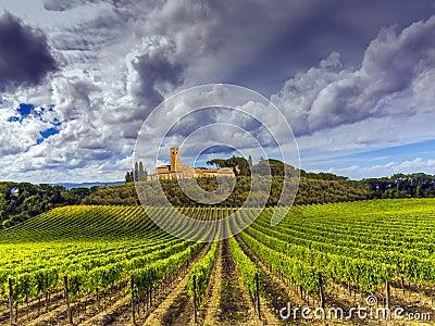 Tuscany vineyards countryside