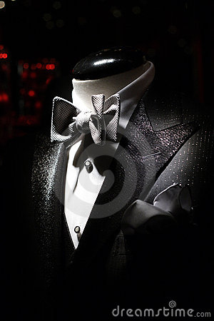 Free Tuxedo Royalty Free Stock Photo - 1578445