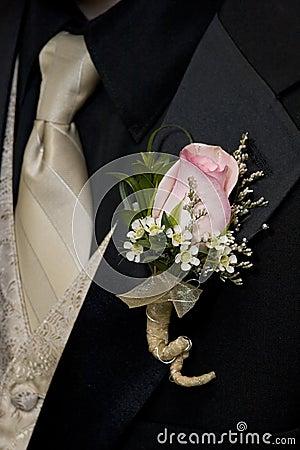 Free Tuxedo And Boutineer Royalty Free Stock Photo - 2629565