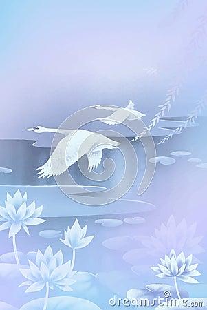 Två swans