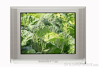 TV and clear cabbage display