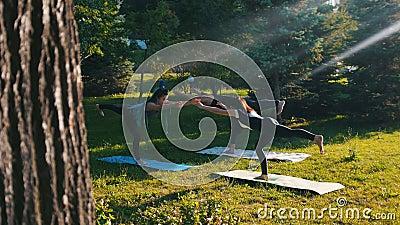 Twee jonge vrouwen die geschiktheid in het park met hun instructeur doen die - zich op één been bevinden en houden het saldo stock footage