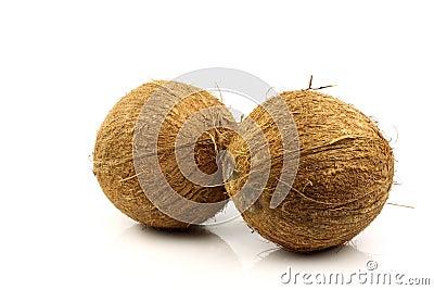 Twee verse kokosnoten