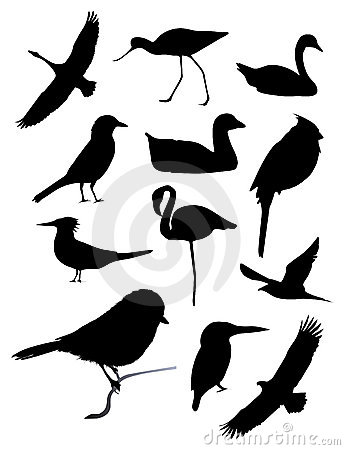 Free Twelve Bird Silhouettes Royalty Free Stock Photo - 3825165