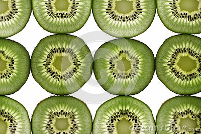 Twelve segments of a kiwi fruit