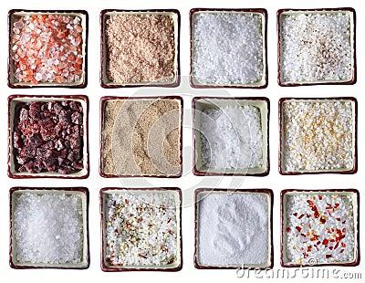 Twelve types of Sea salt in square bowls