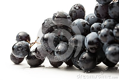 Twig of black grape