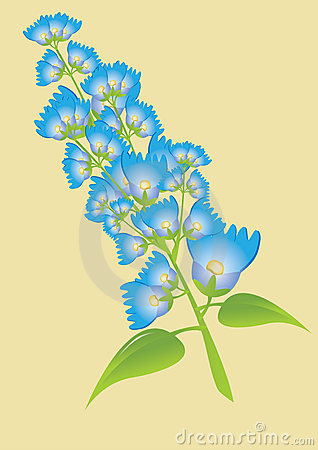 Twig of blue  flowers