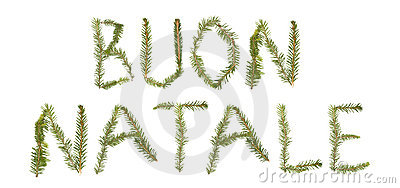 Twigs forming the phrase  BUON NATALE