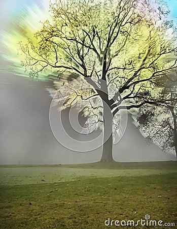 Twilight emotional tree