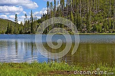 Twin Lakes Yellowstone