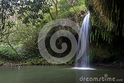 Twinfalls на Норт-Сайд Мауи Гаваи