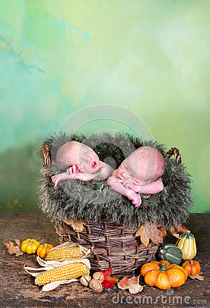 Twins in a basket