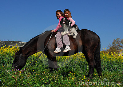 Twins and horse