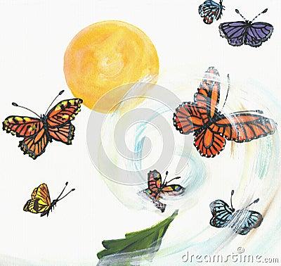 The twist of butterflies