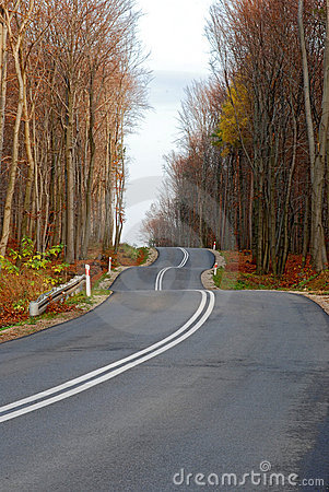 Free Twisty Road In The Autumn Forest Stock Photos - 6939733
