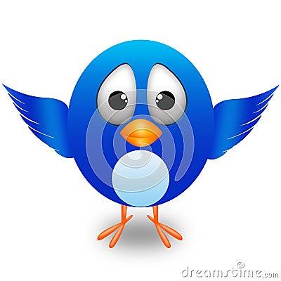 Twitter cute bird