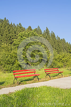 Two abandoned red benches in green forest