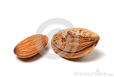 Two almonds on white background