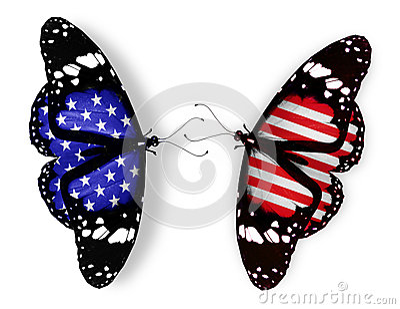 Two american flag butterflies