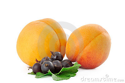 Two apricot and currant