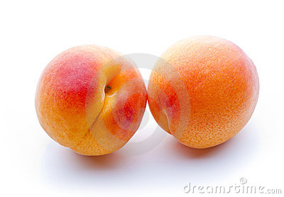 Two apricots close-up