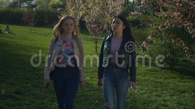 Chatting young women walking in blooming spring park stock footage