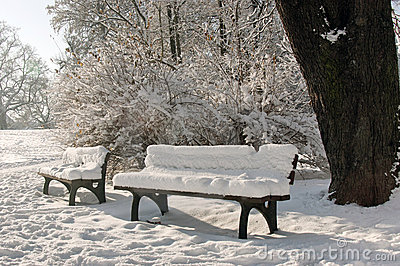 Two benches covered with snow