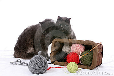 Two black cats turn over a basket of yarn