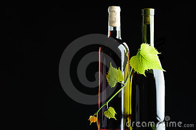 Two bottles wine twined by grapevine