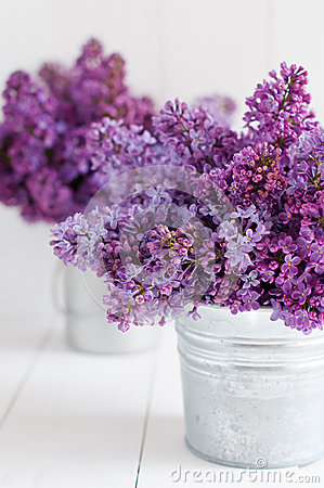 Free Two Bouquet Of Lilac Flowers Stock Photos - 40094843