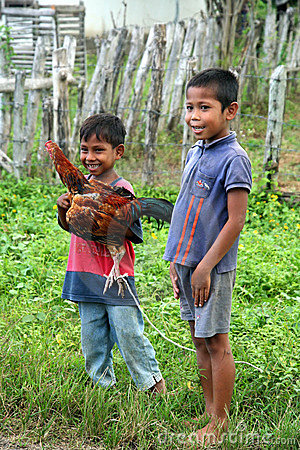 Two boys with a chicken Editorial Image