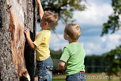 Two boys climbing on a tree
