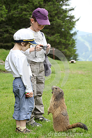Two boys and marmot in Alps