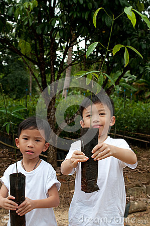 Two boys show young plant